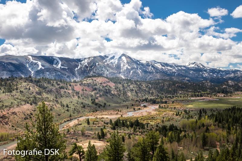Sierra Nevada Tal - Bärental - in vollem Grün